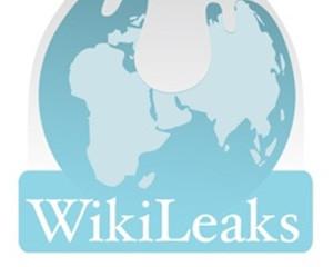 wikileaks23.jpeg